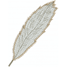Feather light10